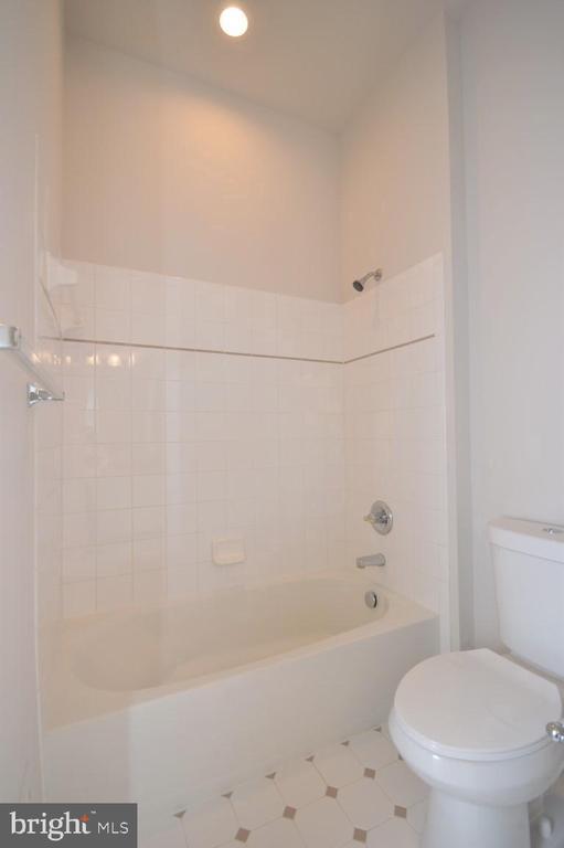 Main Level Full Bath w/Tub & Shower - 42764 RIDGEWAY DR, BROADLANDS