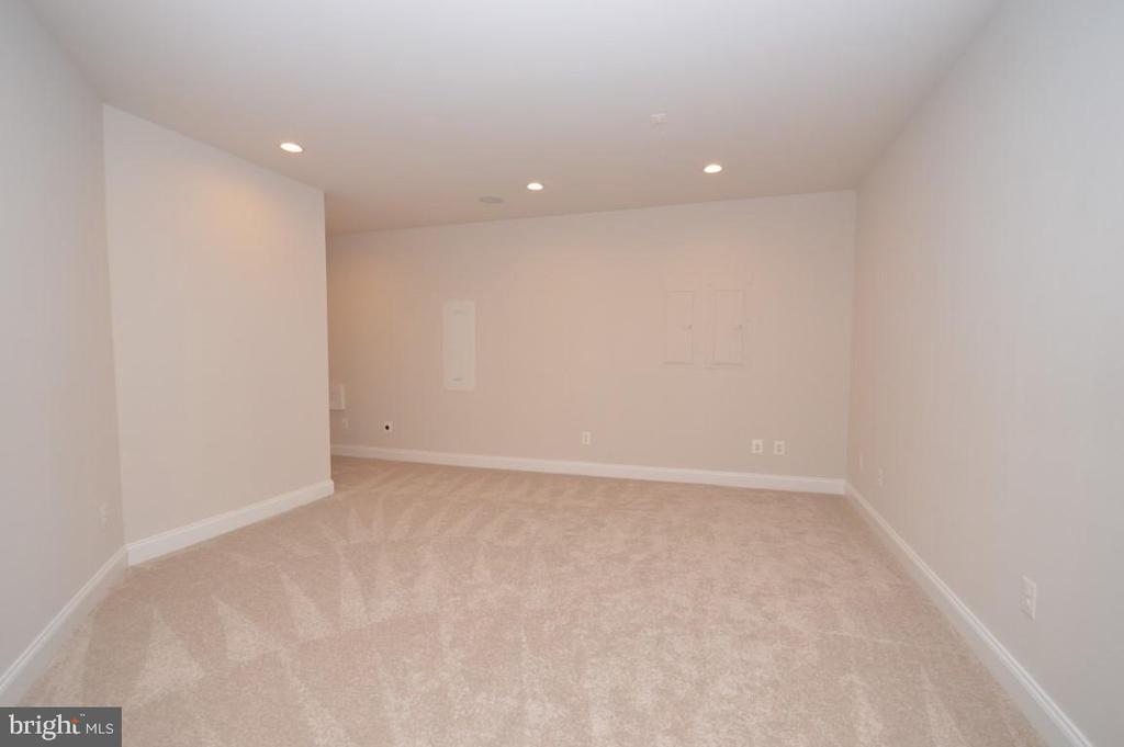 Lower Level Bonus Room - 42764 RIDGEWAY DR, BROADLANDS