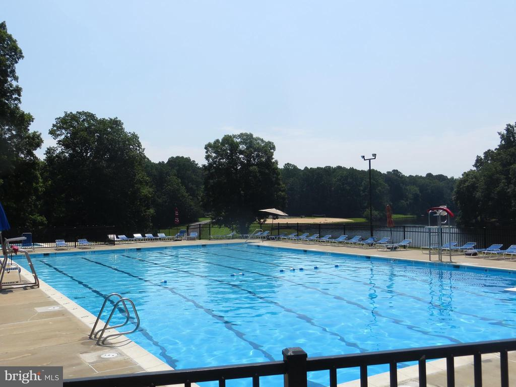 Pool Overlook - 11709 WILDERNESS PARK DR, SPOTSYLVANIA