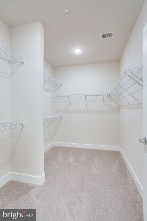 Walk-In Closet - 11200 RESTON STATION BLVD #501, RESTON