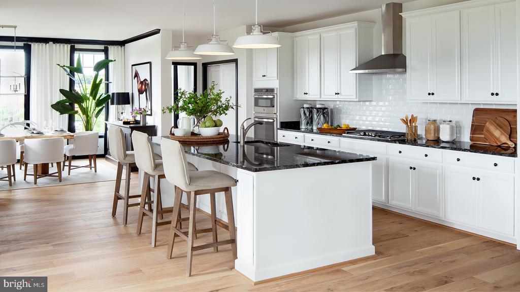 Kitchen - 23526 NEERSVILLE CORNER TER, ASHBURN