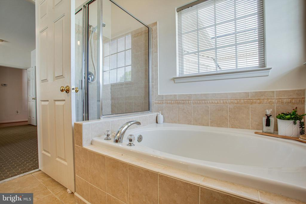 Master Bath Tub and Shower - 5625 E KESSLERS XING, FREDERICKSBURG