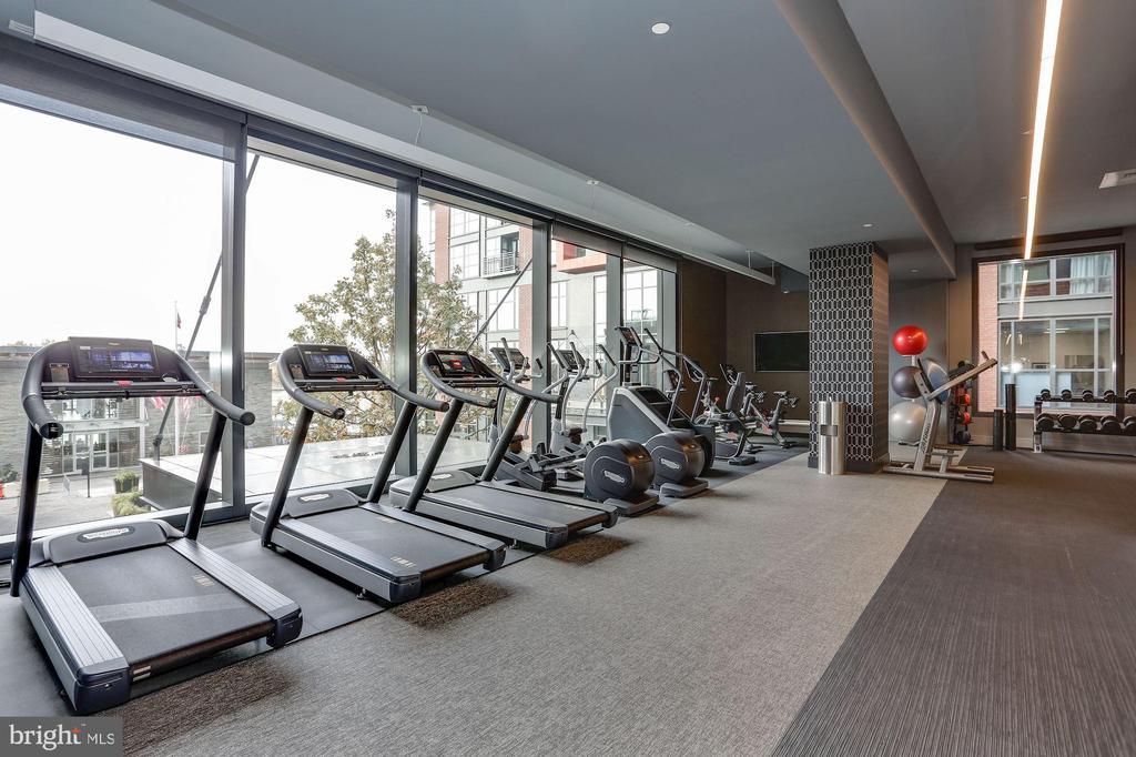 Sunny above ground fitness Center - 45 SUTTON SQ SW #1116, WASHINGTON