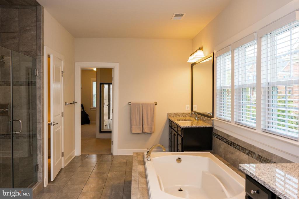 Fully upgraded Master Bathroom - 26600 MARBURY ESTATES DR, CHANTILLY