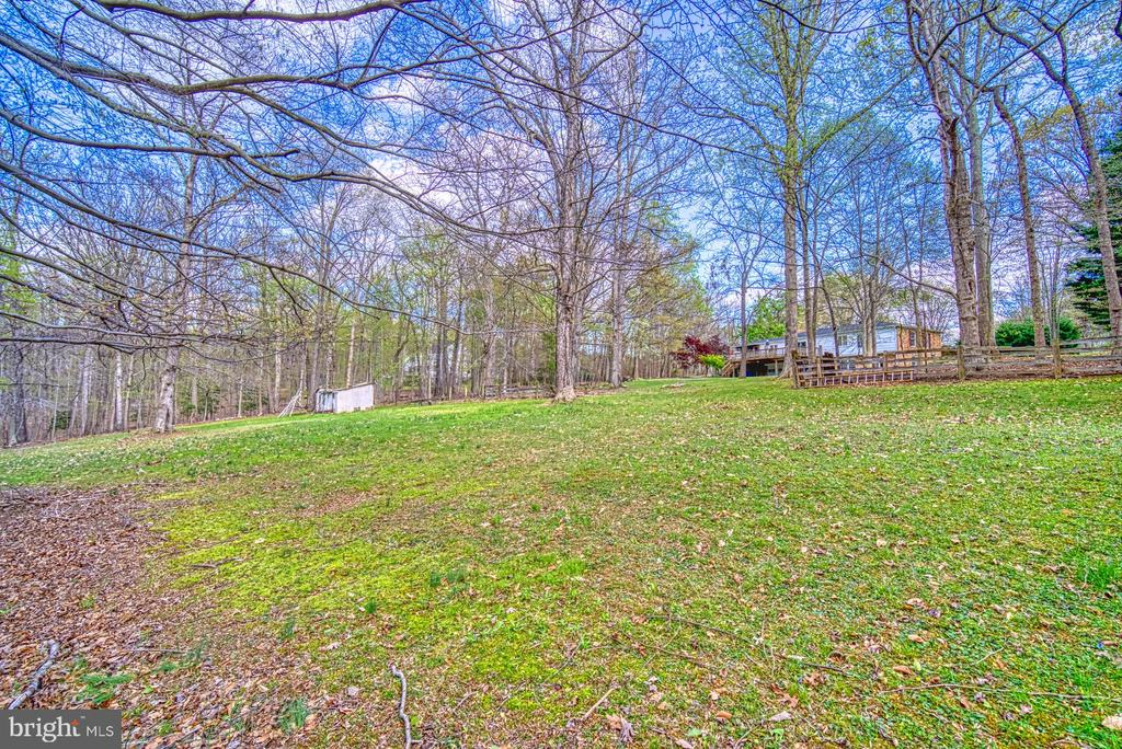 View from house to rear lot - 11610 HENDERSON RD, CLIFTON