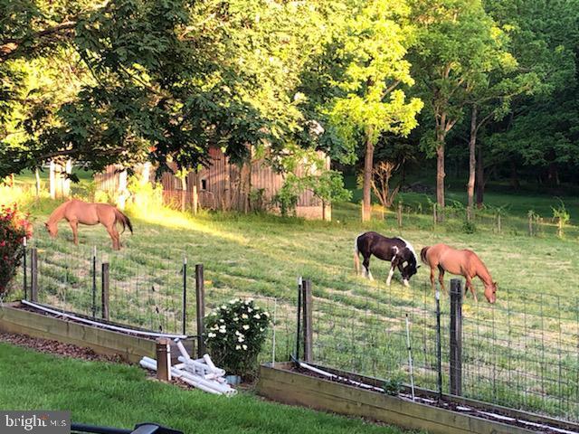Beautiful Ranch/Farm Backs To Rock Creek Park - 5917 WILD FLOWER CT, ROCKVILLE