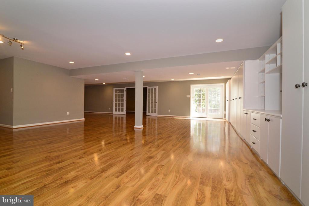 Rec room with walkout - 13247 MIDDLETON FARM LN, HERNDON