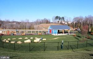 Community Dog Park - 102 ALMOND DR, STAFFORD