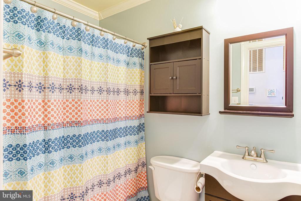 Upper Level Full Bathroom Hall - 19126 SANDYHOOK RD, KNOXVILLE