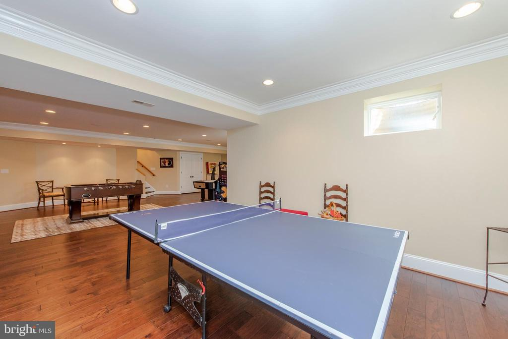 Basement - 5222 SWEET MEADOW LN, CLARKSVILLE