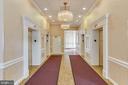 Expansive Wide Elevator Hallway - 3800 FAIRFAX DR #1512, ARLINGTON