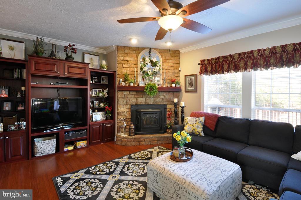 Family Room with Pellet Stove - 10636 CATHARPIN RD, SPOTSYLVANIA