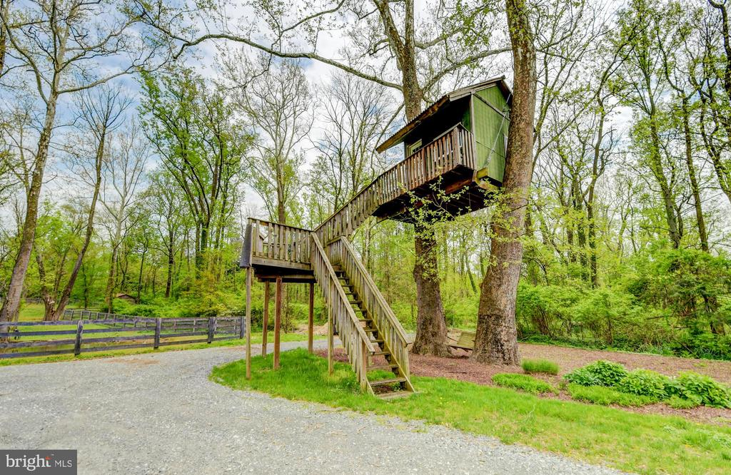 Tree House - 10807 GREENSPRING AVE, LUTHERVILLE TIMONIUM