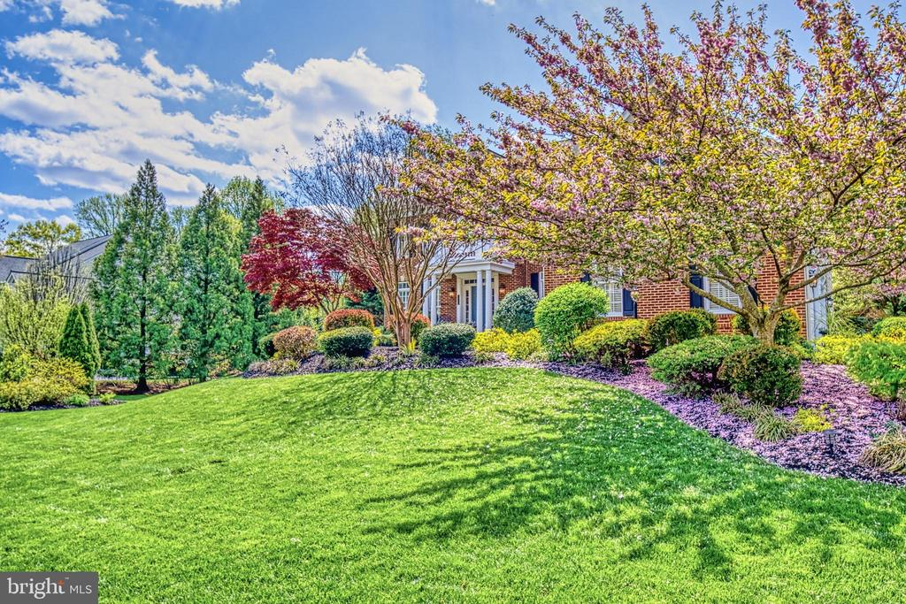 Spring brings absolutely amazing cherry blossoms! - 2704 SILKWOOD CT, OAKTON