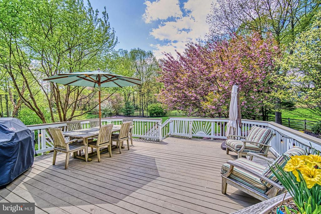 This deck is huge and has privacy plus views! - 2704 SILKWOOD CT, OAKTON