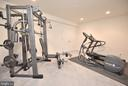 Exercise Room - 60 SNAPDRAGON DR, STAFFORD
