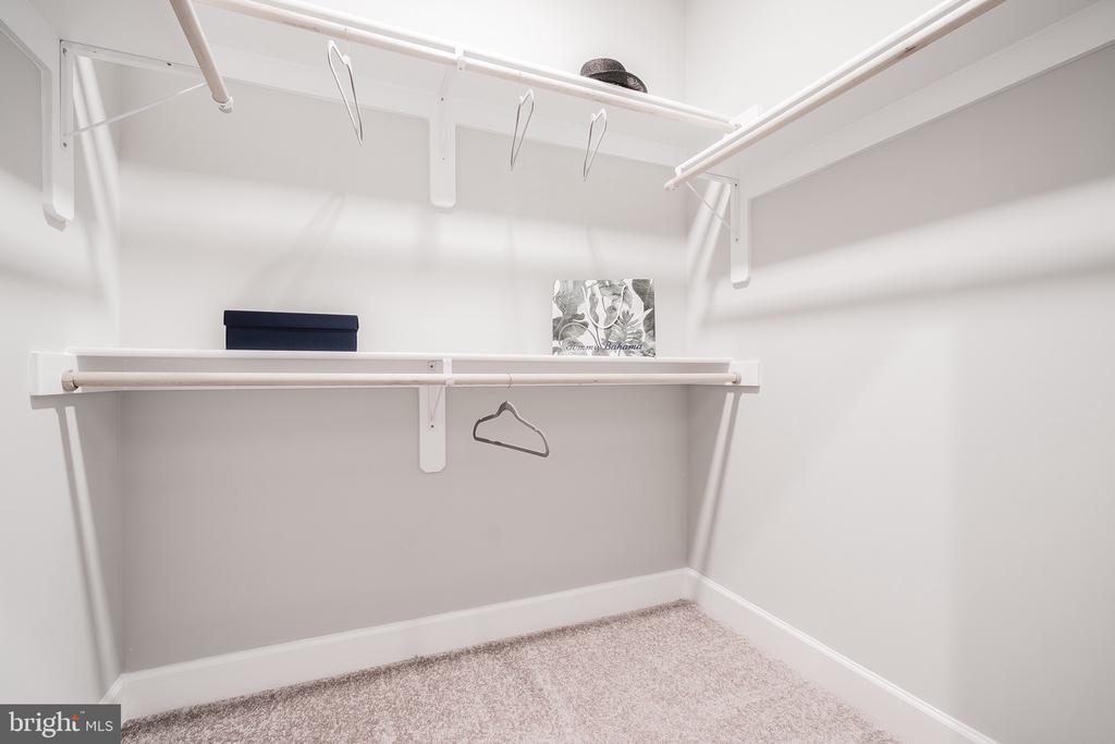 2nd of Two Walk-in Closets Hi/Low and Long Hanging - 8604 NORFOLK AVE, ANNANDALE