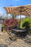 View of yard/trees from backyard dining. - 17350 DRY MILL RD, LEESBURG