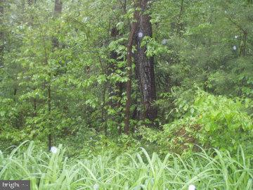 Build your dream home on lovely wooded lot