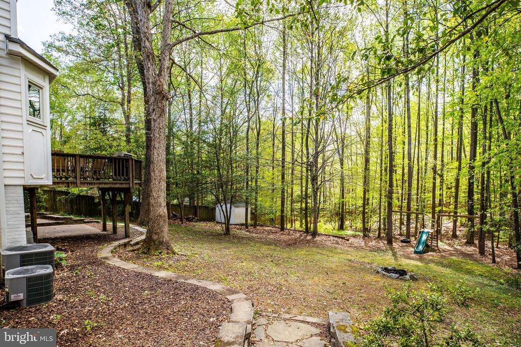 Backyard - 10408 EDINBURGH DR, SPOTSYLVANIA