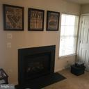 Family Room Fireplace - 7761 VALLEY OAK DR #208, ELKRIDGE