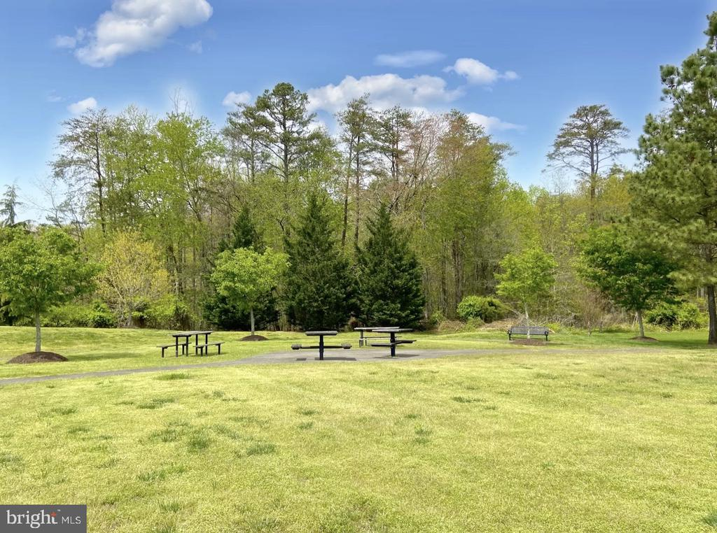 Picnic tables and field for frolicking - 31 CRAWFORD LN, STAFFORD