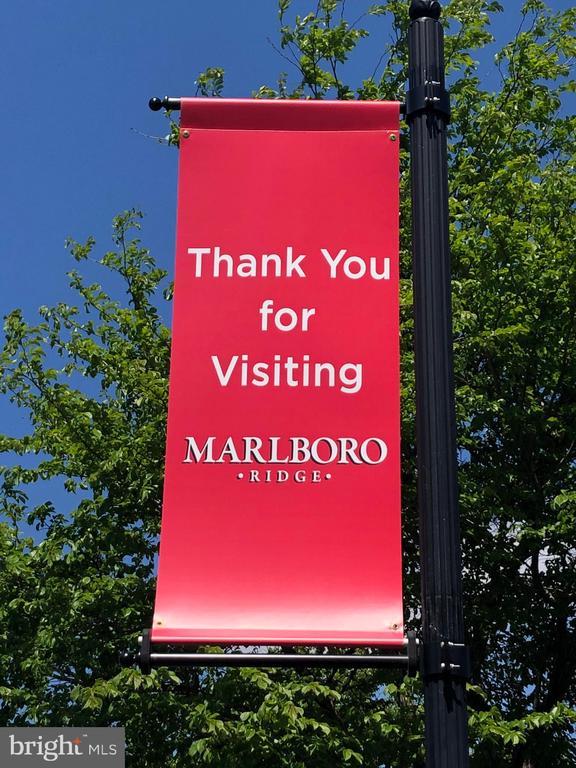 Thank You For Visiting! - Community - 11504 PEGASUS CT, UPPER MARLBORO
