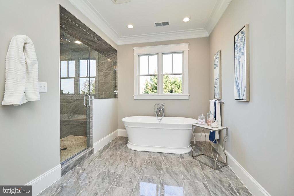 Master bathroom-Same  model, different location - 4042 21ST ST N, ARLINGTON