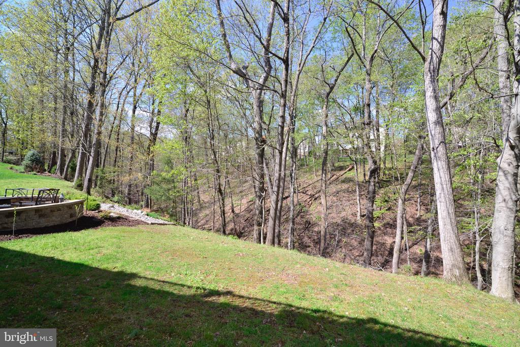 View of Peaceful Wooded Parkland. - 18229 CYPRESS POINT TER, LEESBURG
