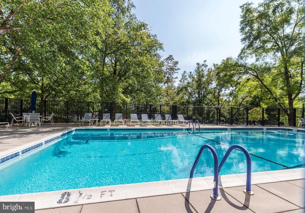 Community Swimmng Pool - 4620 N PARK AVE #1005E, CHEVY CHASE