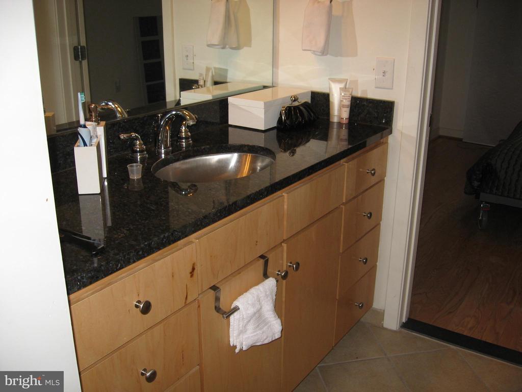 Master Bathroom - 1117 10TH ST NW #504, WASHINGTON