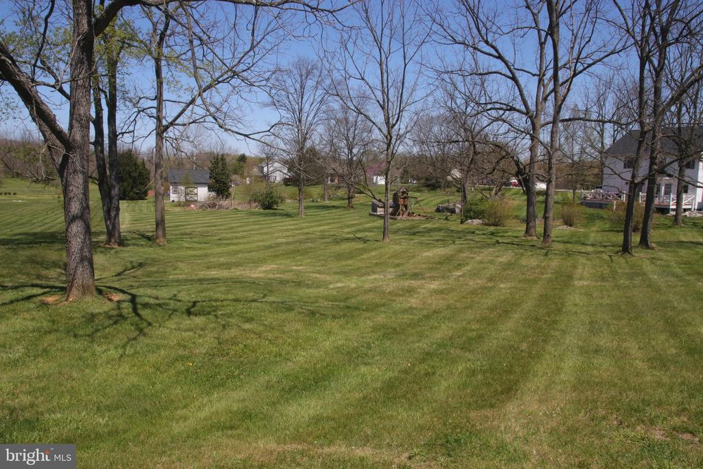 Rear yard:  Lots of space to play and entertain. - 162 NOEL, MARTINSBURG