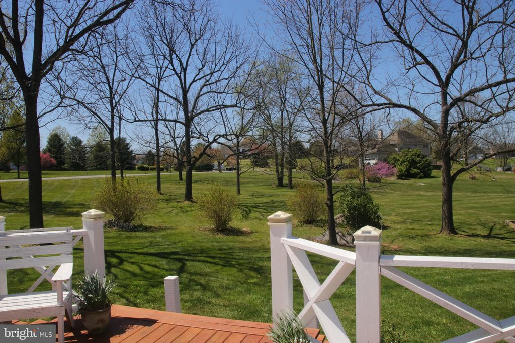 View of the plentiful trees from the deck. - 162 NOEL, MARTINSBURG