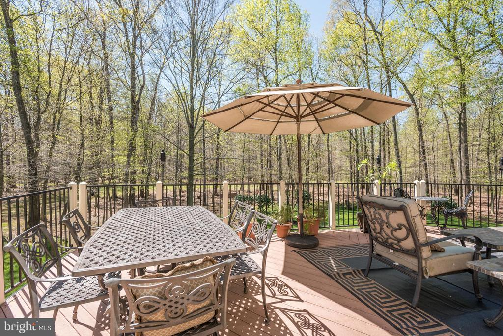 View from the deck - 40989 GRENATA PRESERVE PL, LEESBURG
