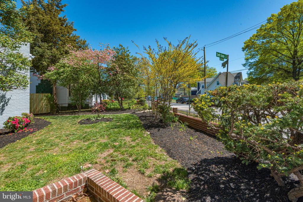 Exterior Yard - 3701 SOUTH DAKOTA AVE NE, WASHINGTON