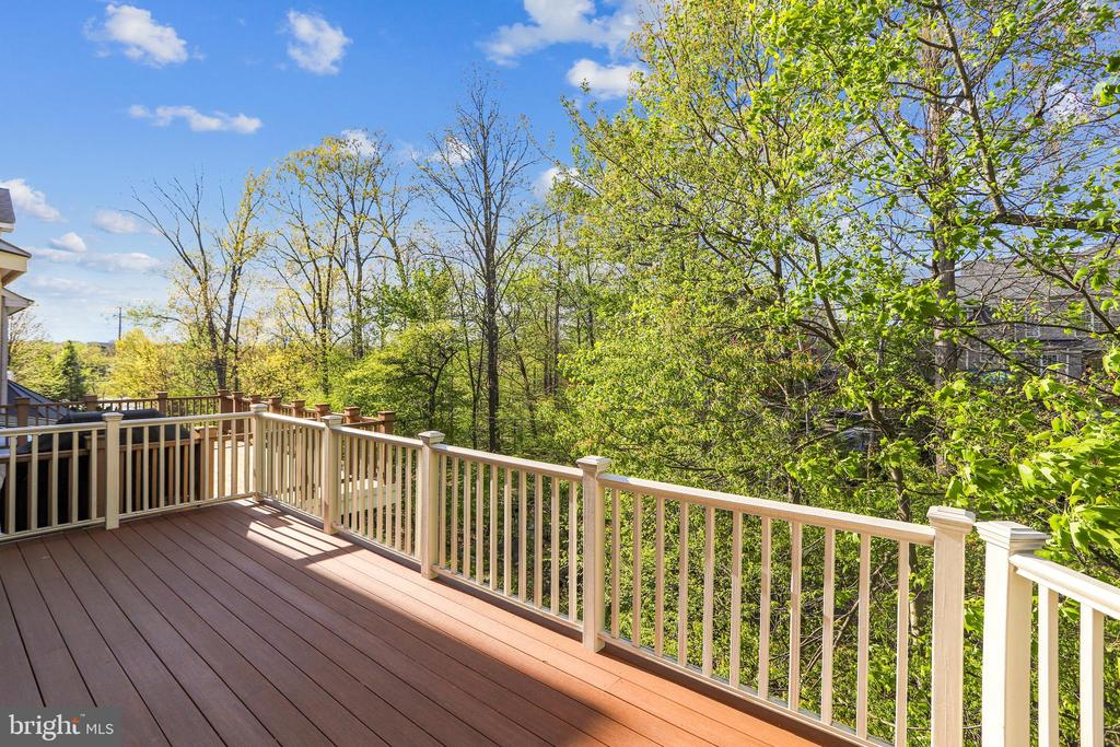 Views of the Trees, Creek, Paths - even the Pond! - 1911 LOGAN MANOR DR, RESTON