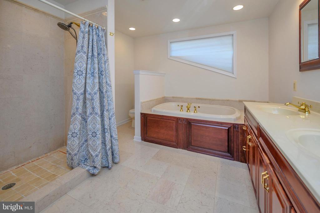 Luxurious master bath - 118 CONFEDERATE CIR, LOCUST GROVE