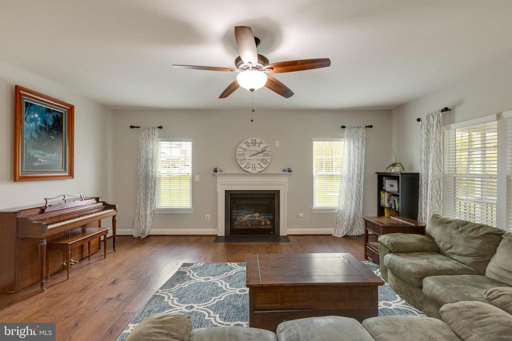Family room - 25916 SYCAMORE GROVE PL, ALDIE