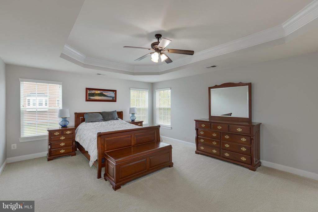 Master bedroom with trey ceiling! - 25916 SYCAMORE GROVE PL, ALDIE