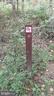 Connects to the GCCT trail and W&OD - 10651 OAKTON RIDGE CT, OAKTON