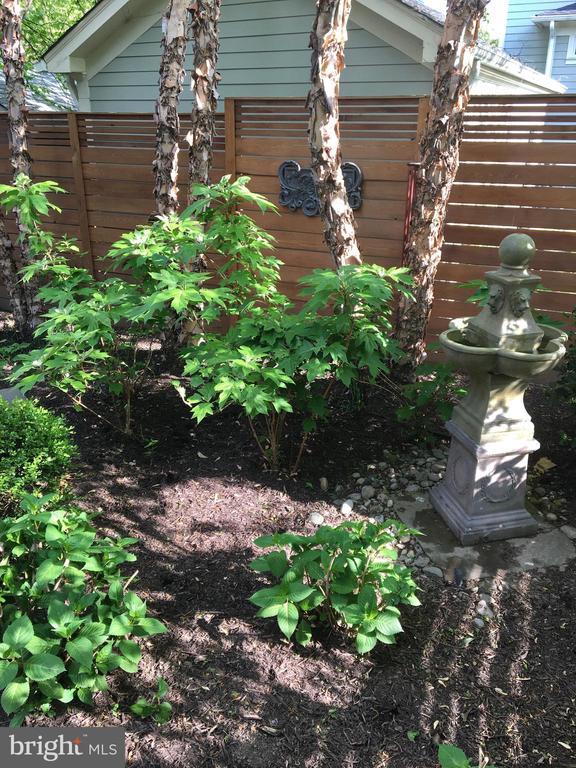 Garden - 27 E MASONIC VIEW AVE, ALEXANDRIA