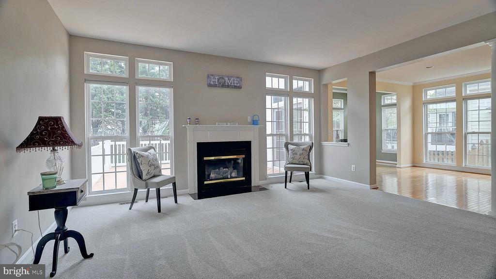 Family Room, gas fireplace with mantle - 43262 LECROY CIR, LEESBURG