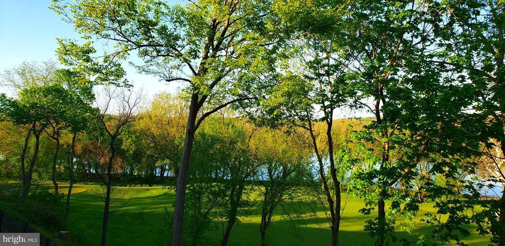 PHOTOS TAKEN APRIL 27  2020 - 18368 FAIRWAY OAKS SQ, LEESBURG