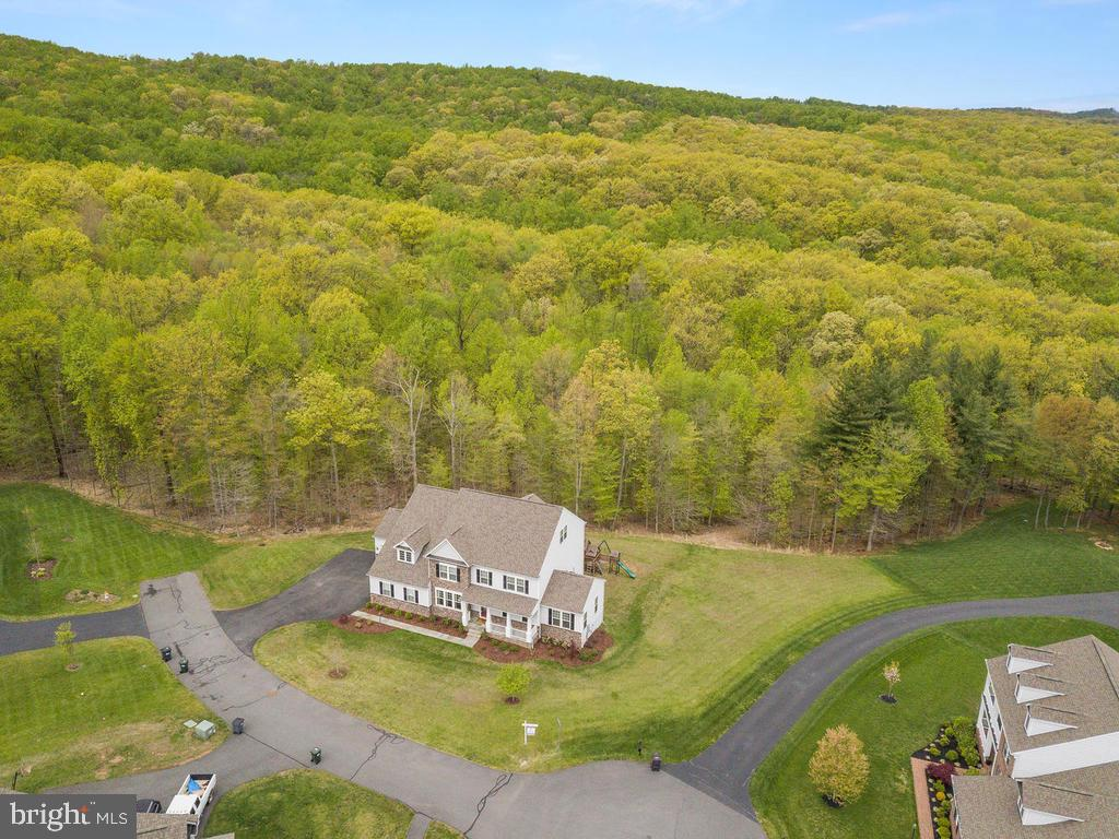Situated on 28 acres - 41532 BLAISE HAMLET LN, LEESBURG