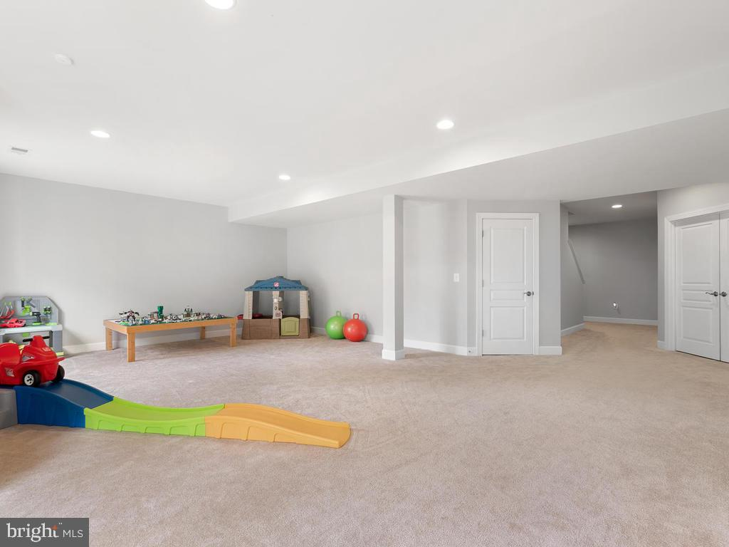 Spacious basement rec room with additional storage - 41532 BLAISE HAMLET LN, LEESBURG