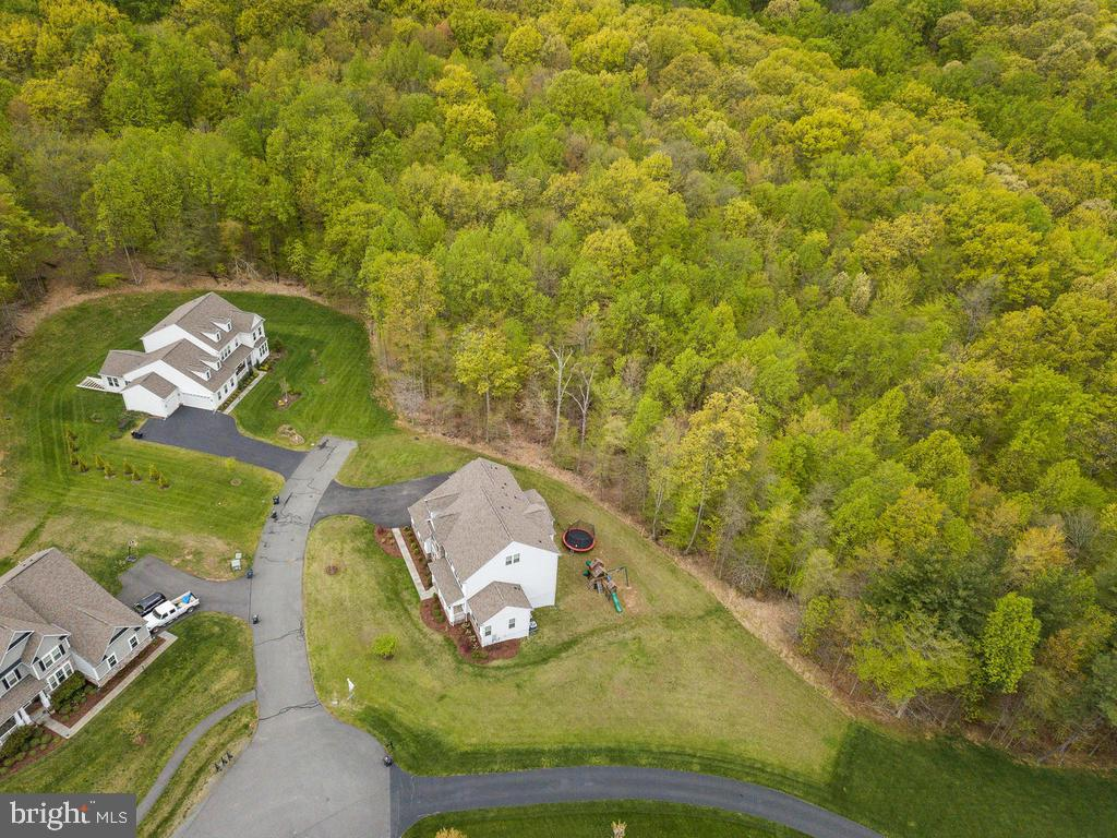 28 wooded acres, your personal oasis! - 41532 BLAISE HAMLET LN, LEESBURG
