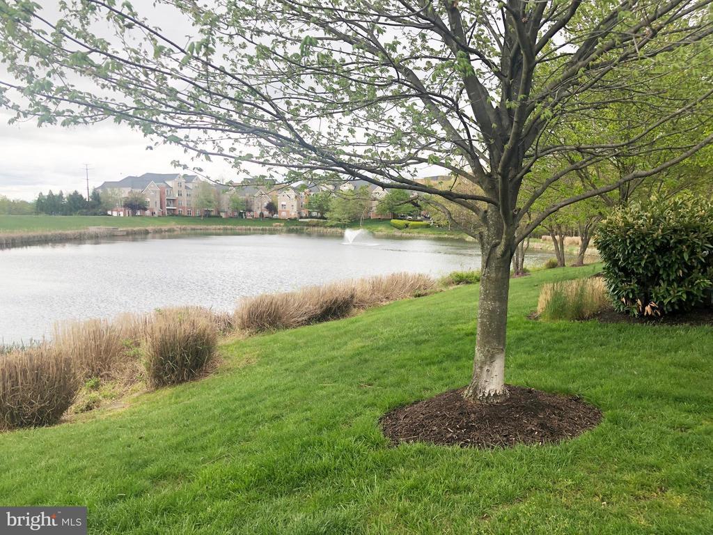 path completely around the pond - 12222 DORRANCE CT, RESTON