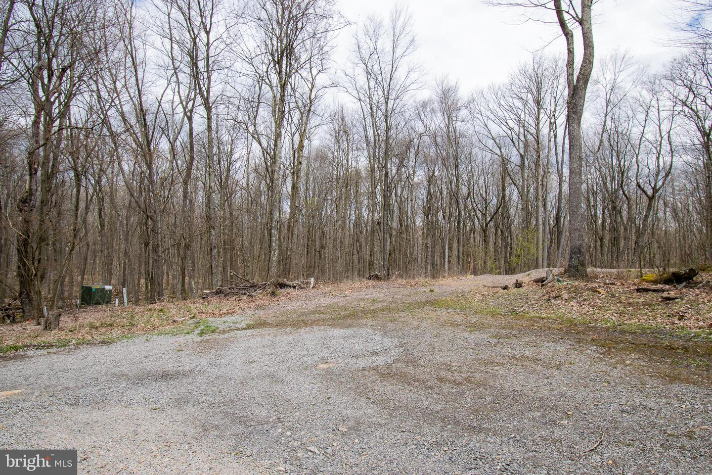 Land for Sale at Bruceton Mills, West Virginia 26525 United States