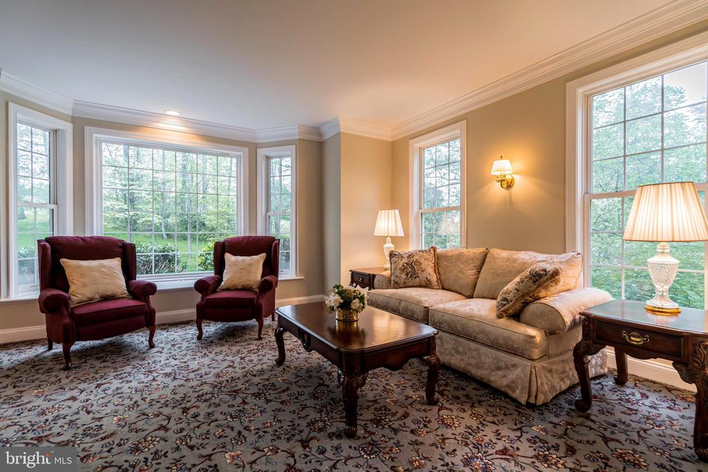 Beautiful formal living room on main level - 20 WINDSONG WAY, STAFFORD