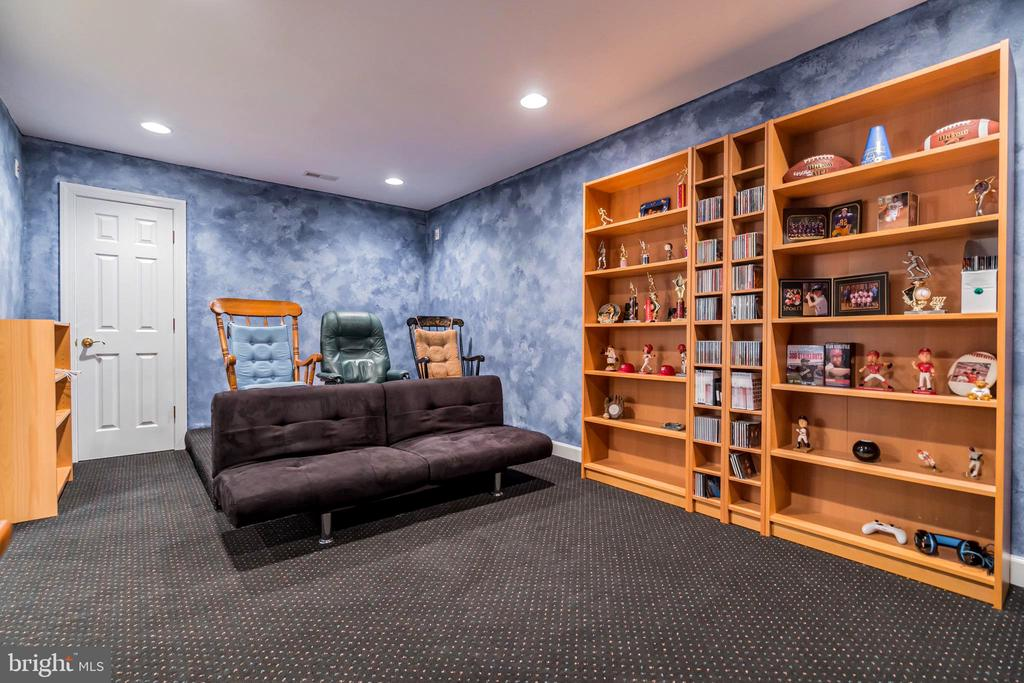 Lower level media room - 20 WINDSONG WAY, STAFFORD